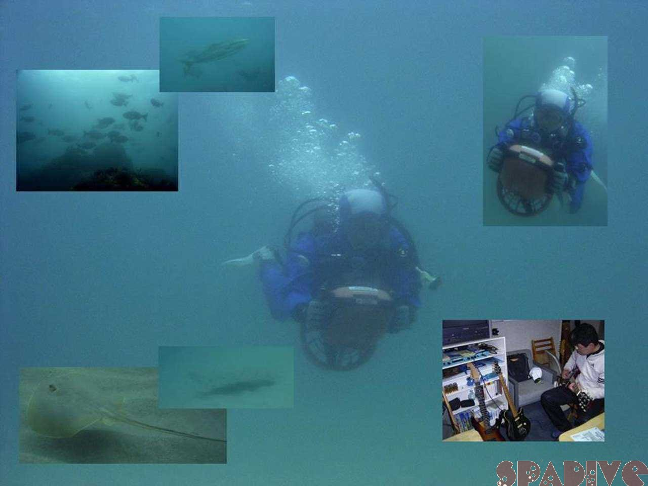 水中スクータSPファンダイビング|潜水後ギター遊び|3/12/2006南紀白浜