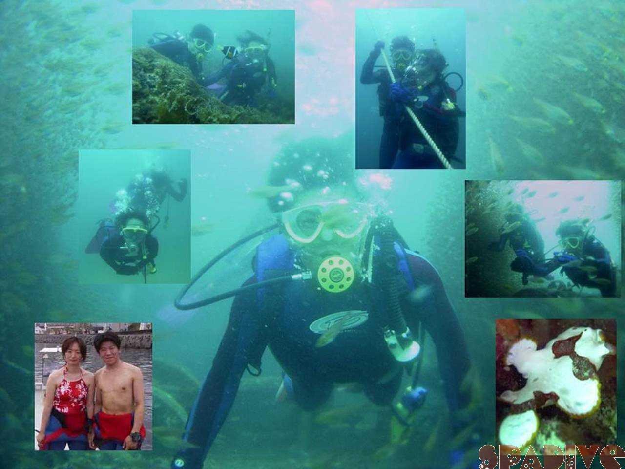 Wアーチ&沈船ボートファンダイビング|6/30/2006南紀白浜