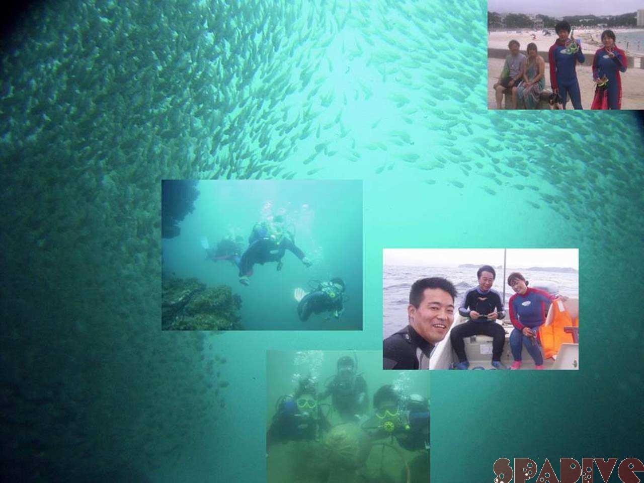 千石丘&沈船ボートファンダイブ|体験ダイビング|7/18/2006白浜