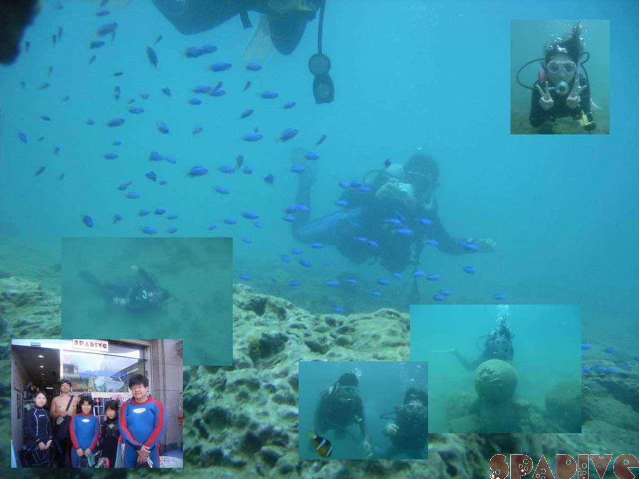 体験ダイビング|OWDライセンス講習|ファンダイブ|8/15/2006白浜