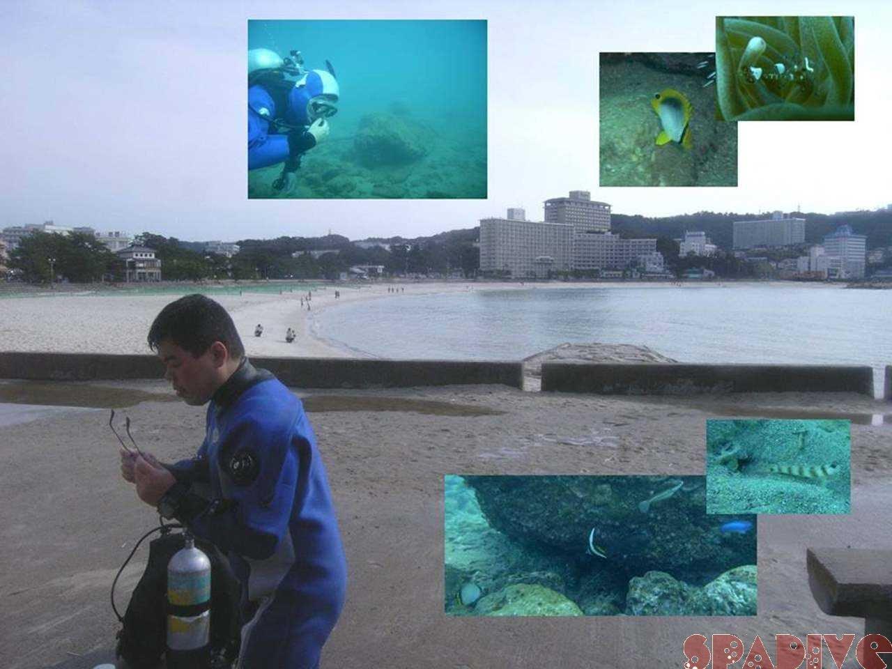 レスキューダイバーコース 1/6/2007白浜権現崎
