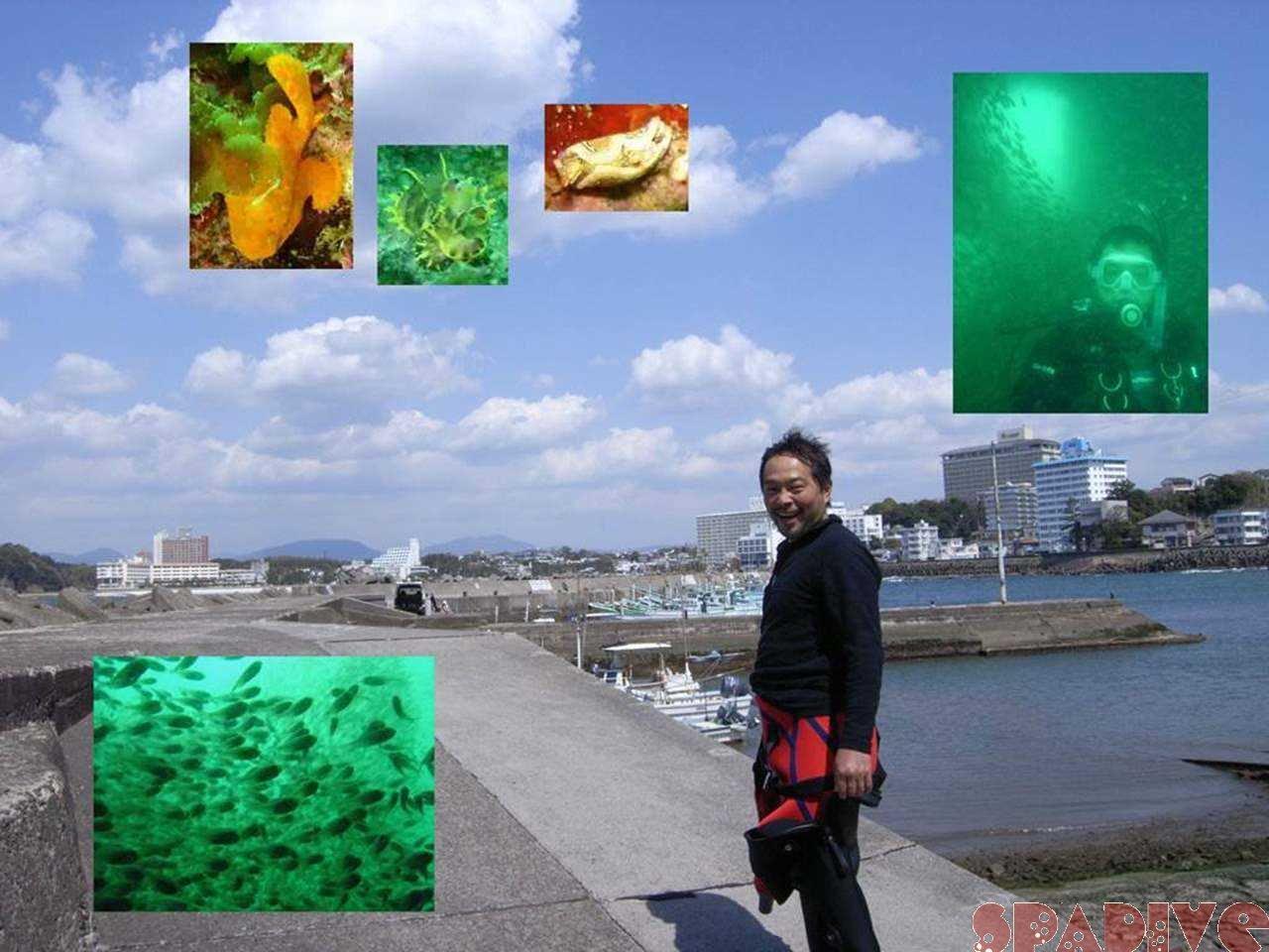 沈船&色津ボートファンダイビング|4/4/2007南紀白浜