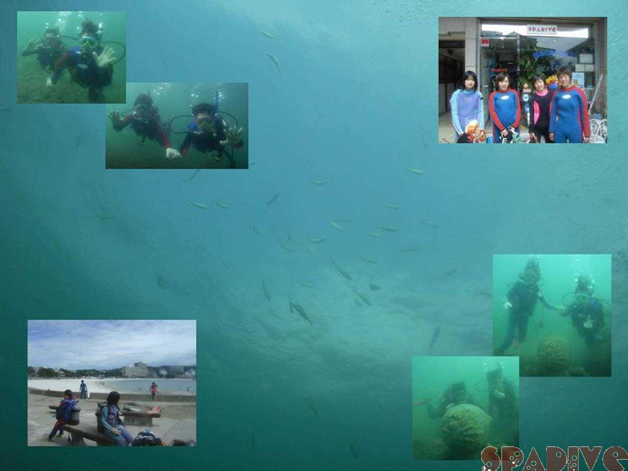 体験ダイビング|6/23/2007白浜権現崎