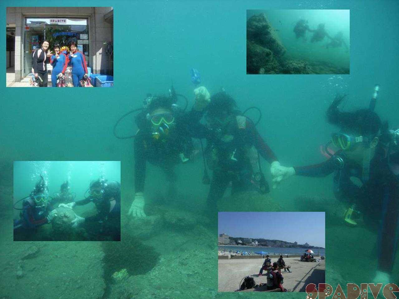 体験ダイビング|7/27/2007白浜 権現崎