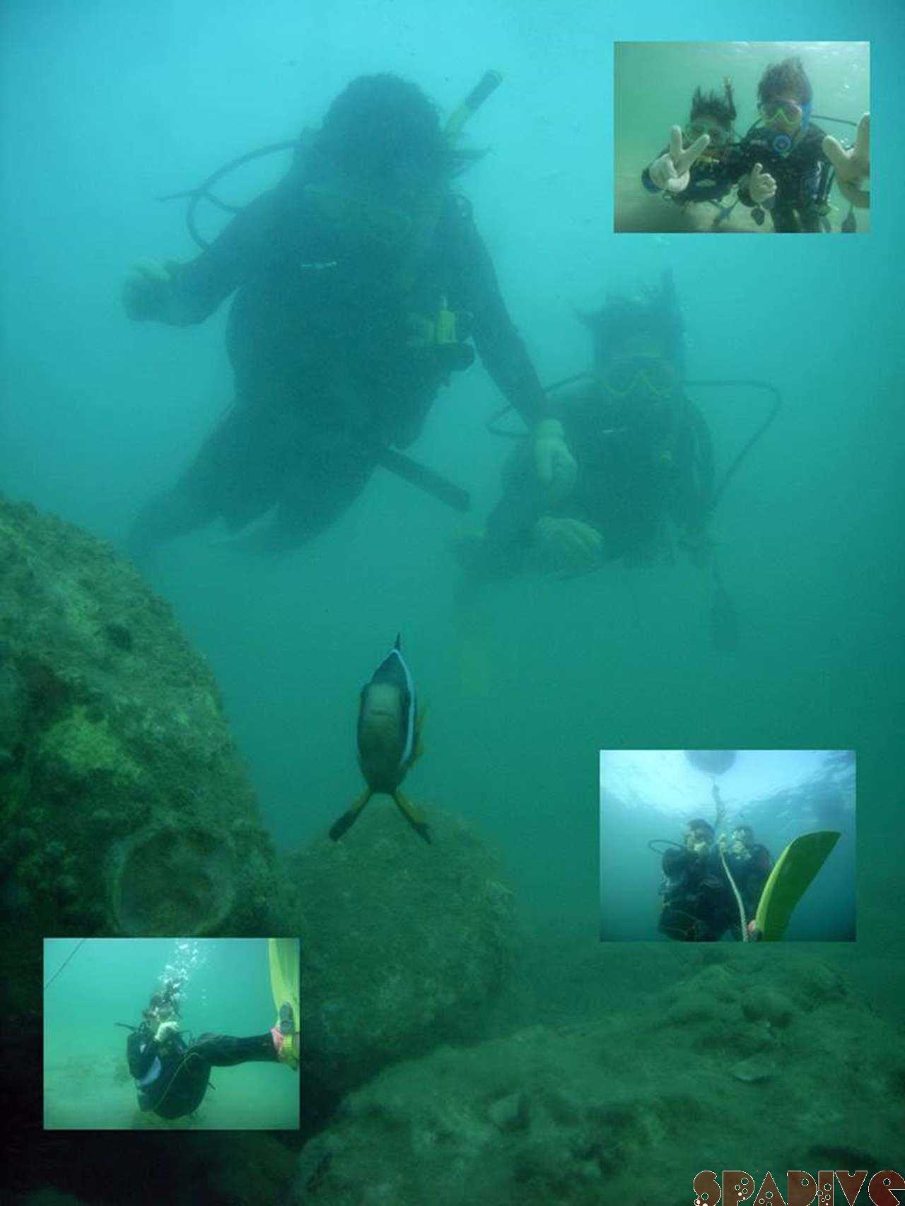 体験ダイビング&OWDライセンス取得スクール|8/27/2007白浜権現崎