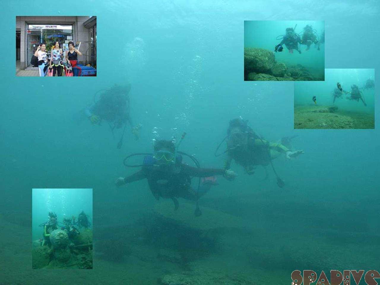 体験ダイビング|9/11/2007白浜権現崎