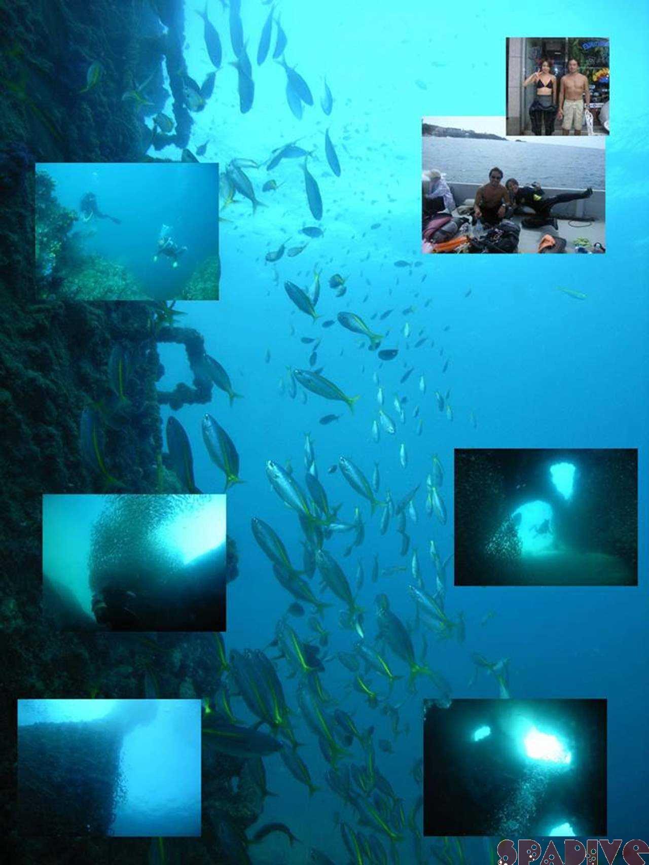 体験スノーケリング 中島観測塔&色津ボートでSPとAOW 9/20/2007