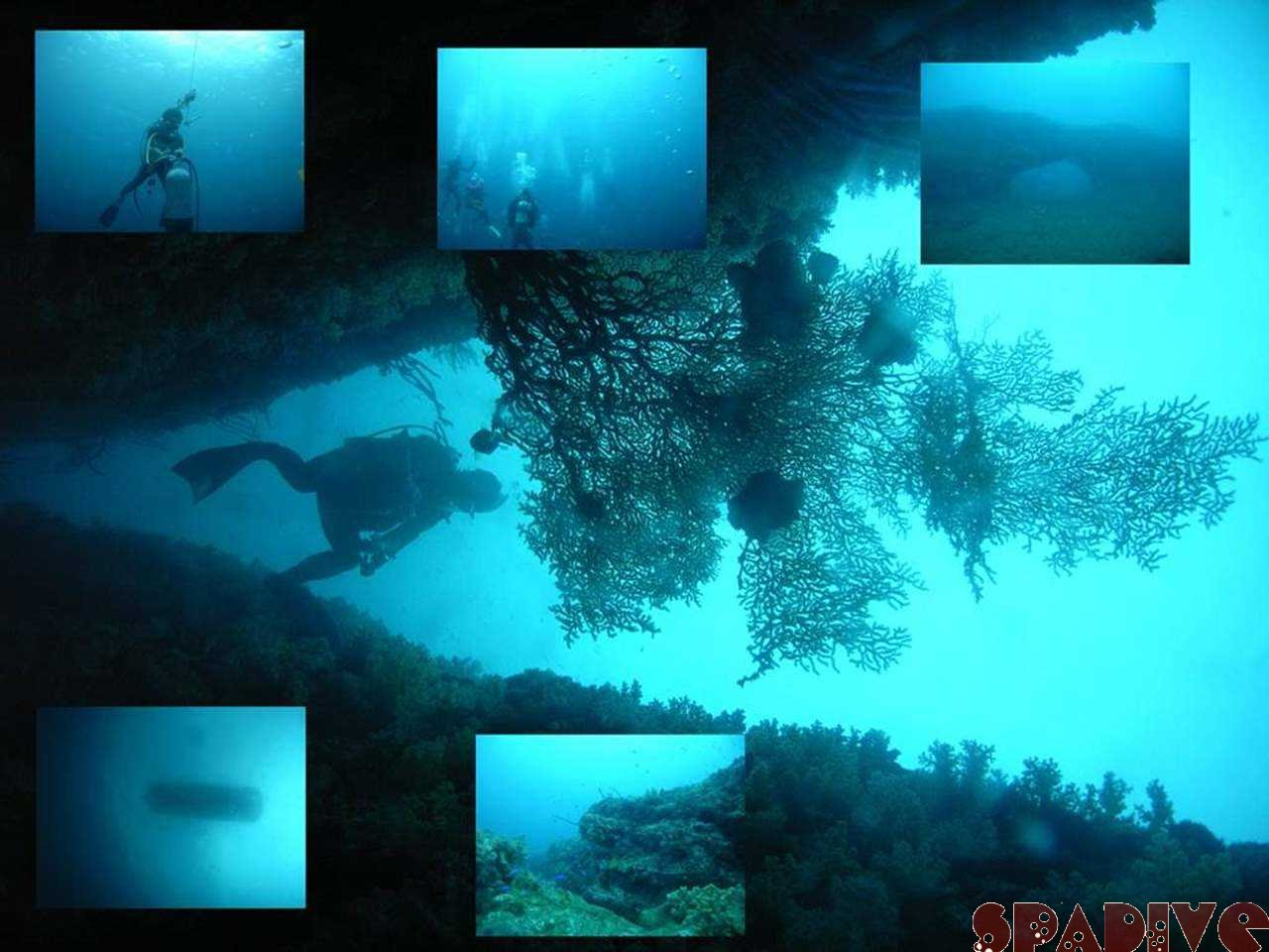 Wアーチ&中島観測塔ボートダイビング|ディープSP|9/21/2007