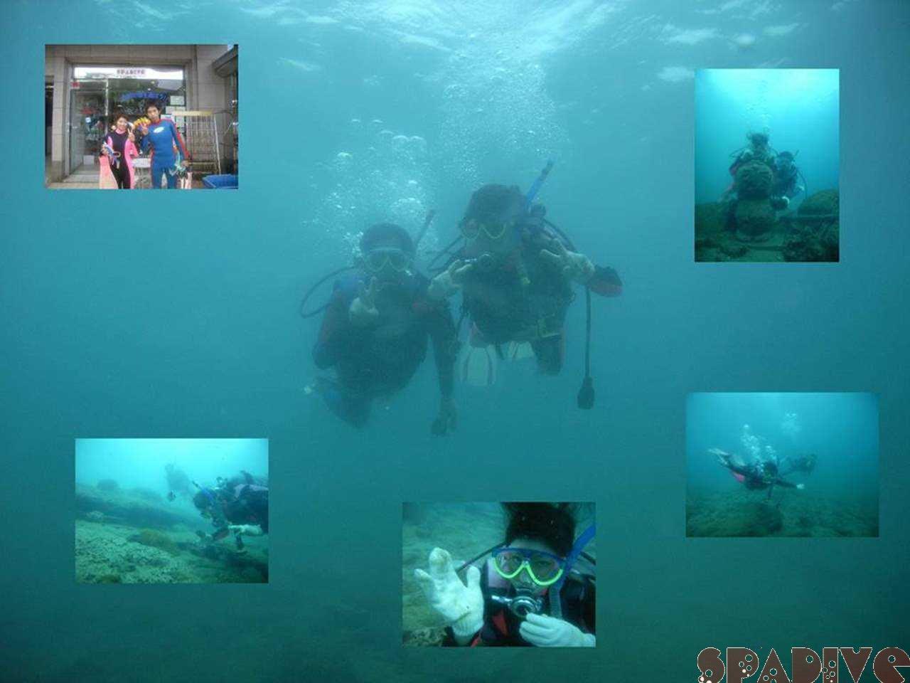 体験ダイビング|11/6/2007南紀白浜権現崎