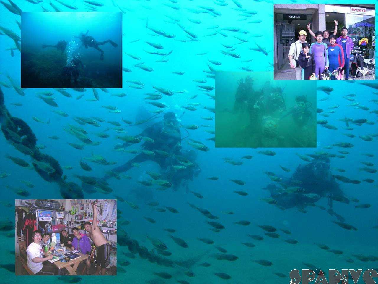 千石丘&沈船ボートファンダイブ|体験ダイビング|5/5/2008白浜