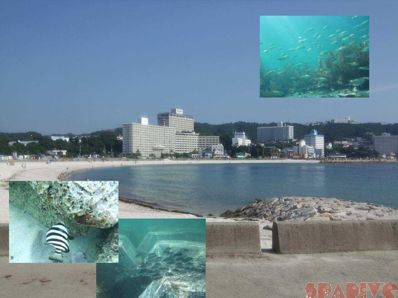 ファイル sea20080704.jpg