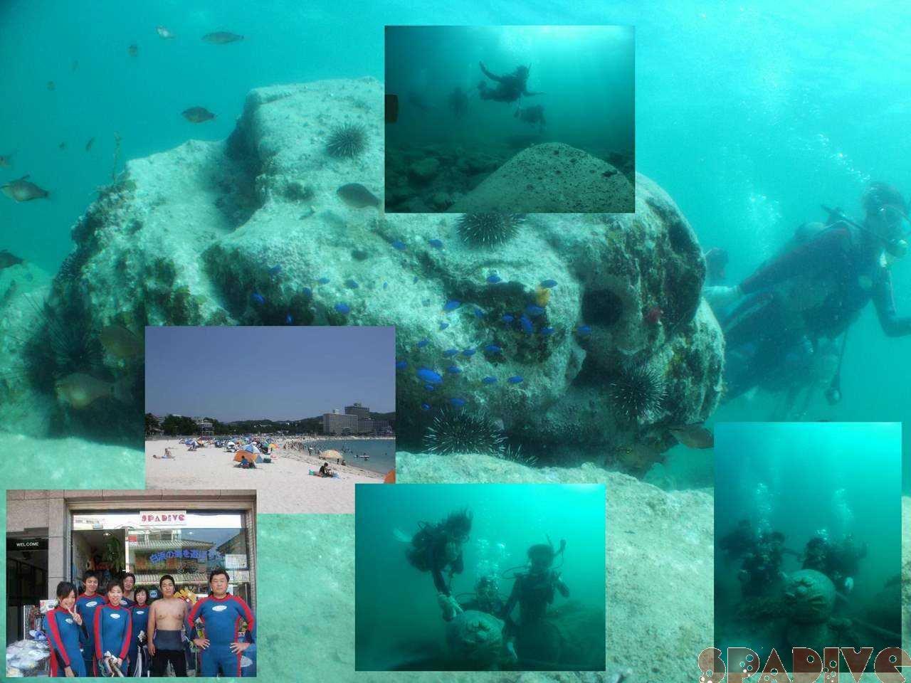 体験ダイビング|7/12/2008南紀白浜権現崎