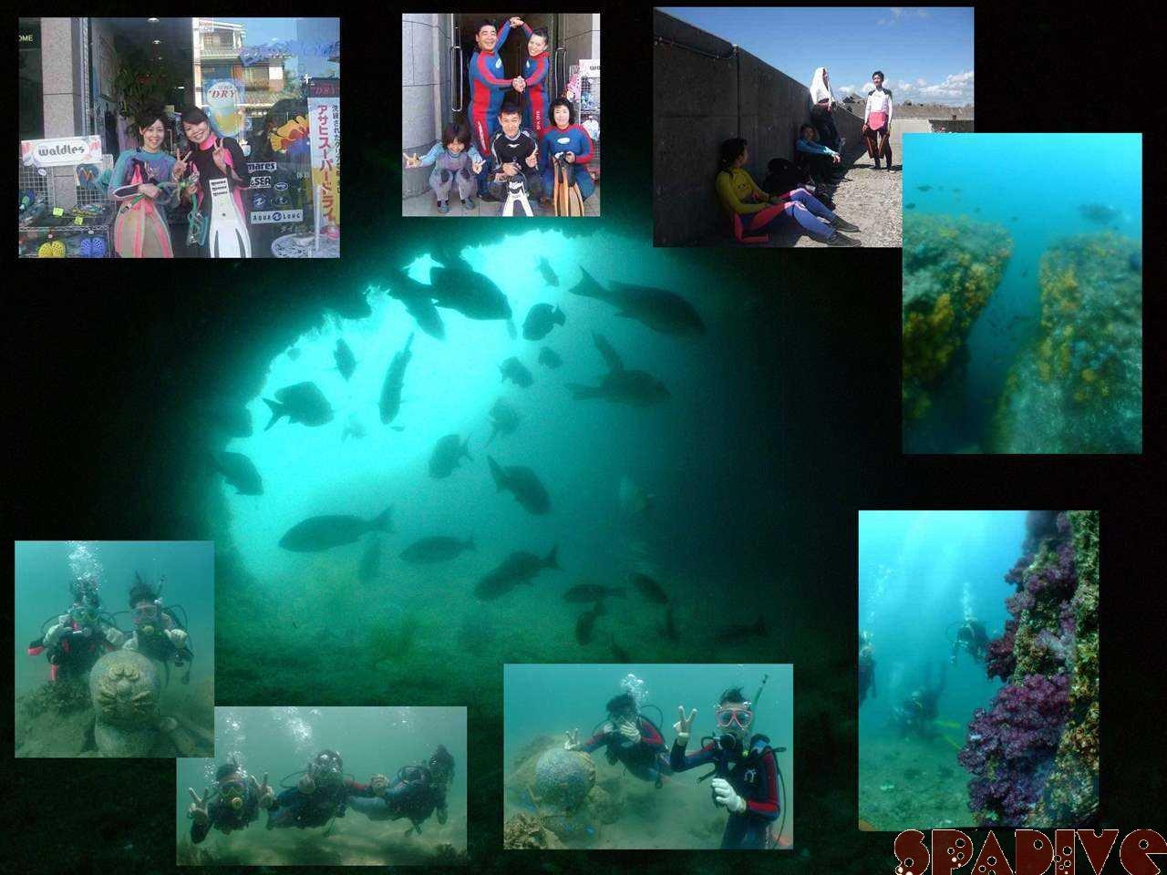 体験ダイビング|沈船北&中島観測塔ボートファンダイブ|7/27/2008