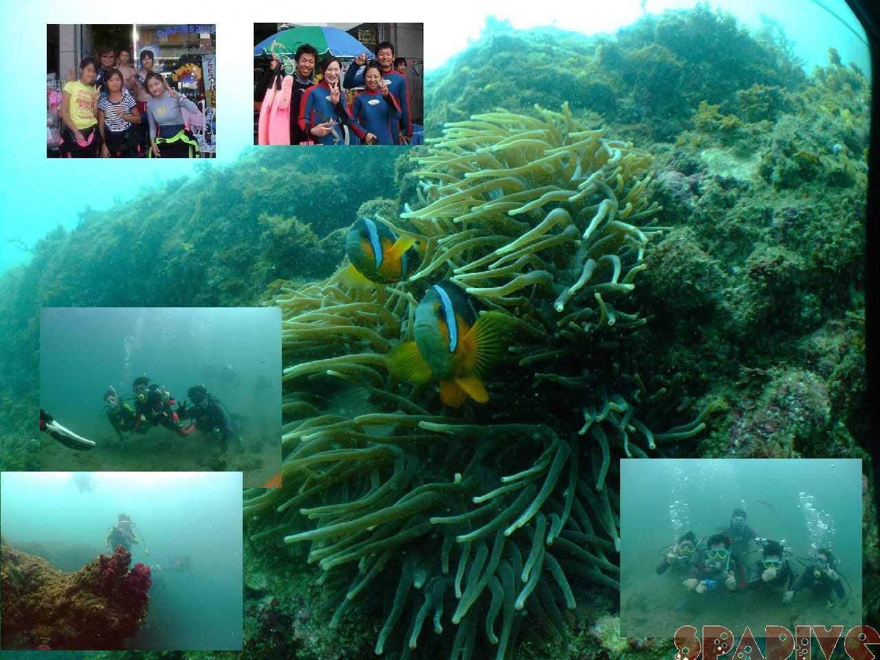 色津ボートファンダイブ&体験ダイビング|8/16/2008