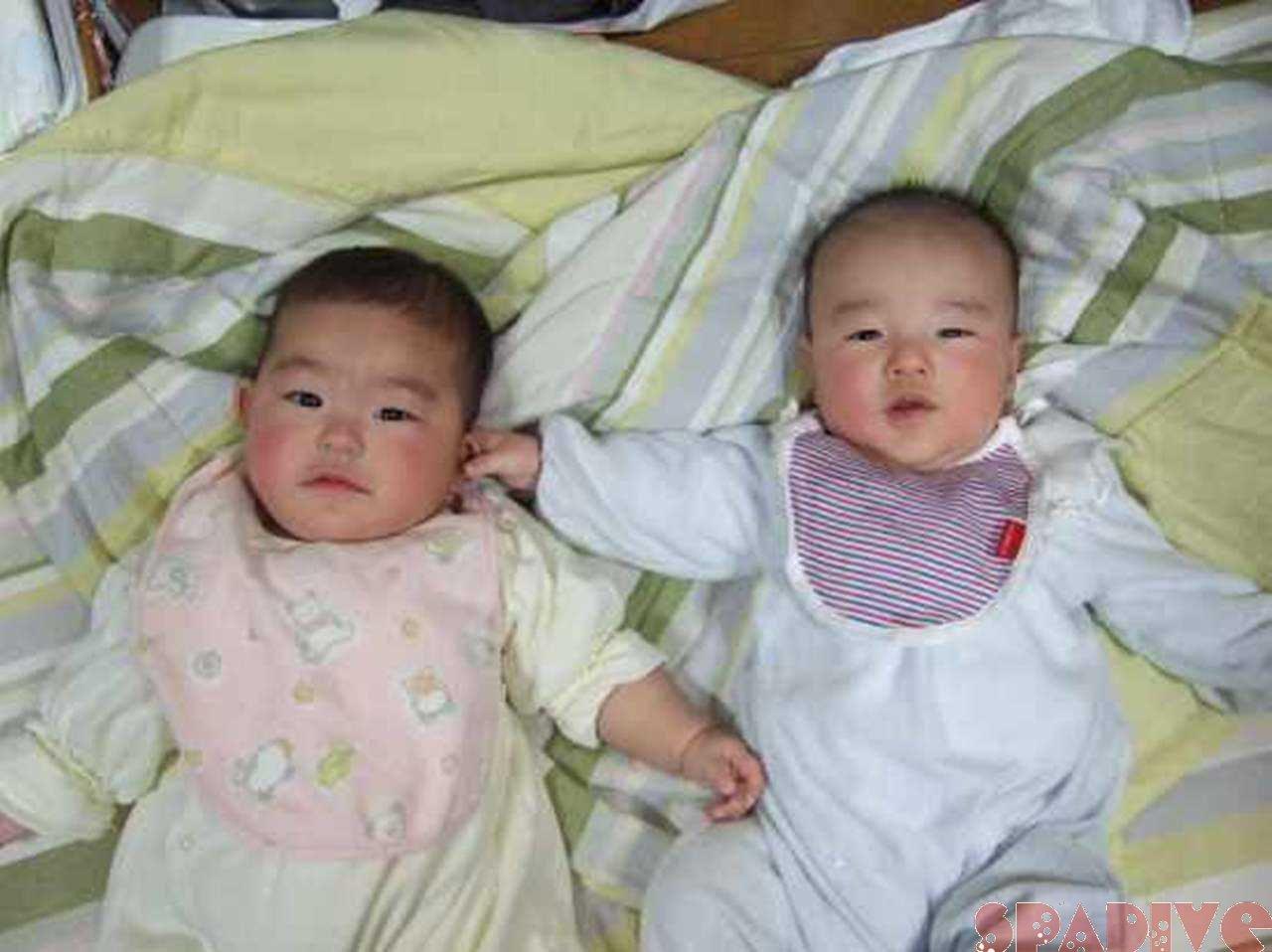 ファイル blog20090319.jpg