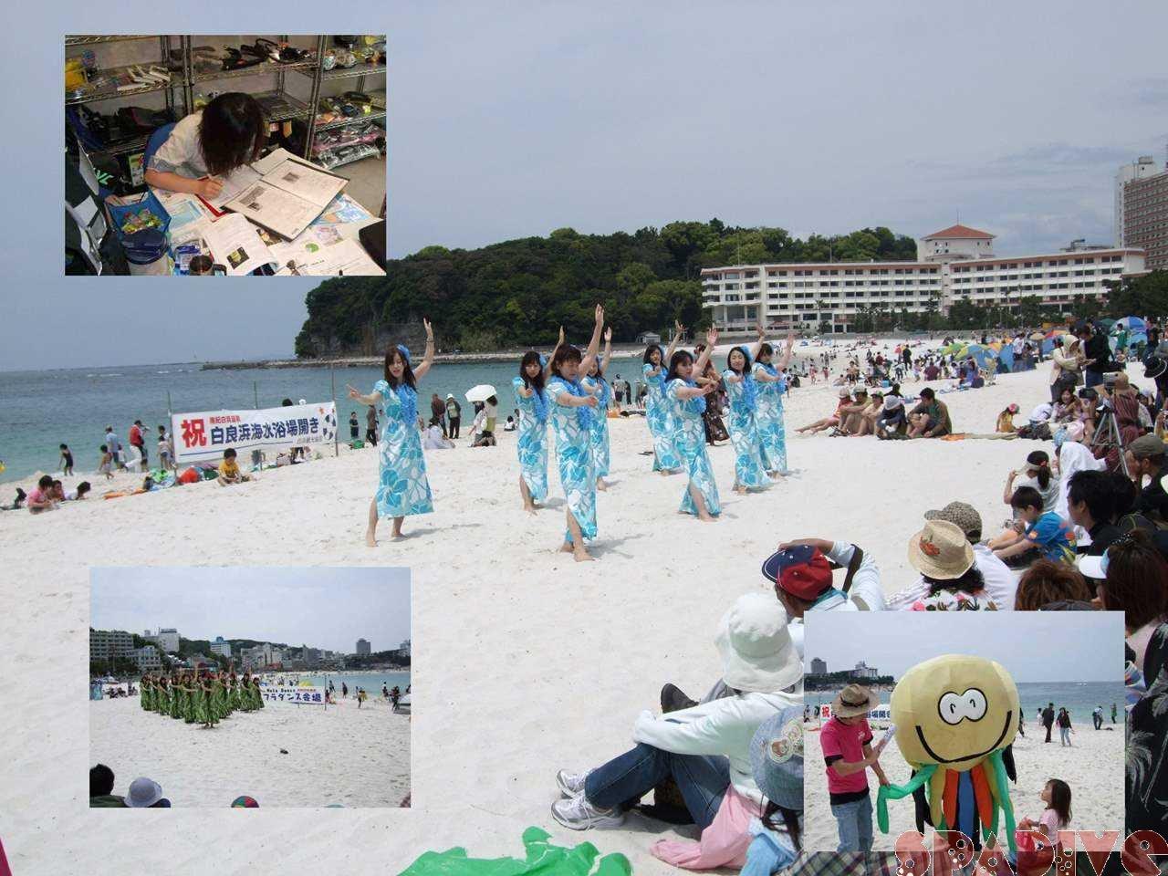 OWD学科講習、白良浜海開き|5/3/2009