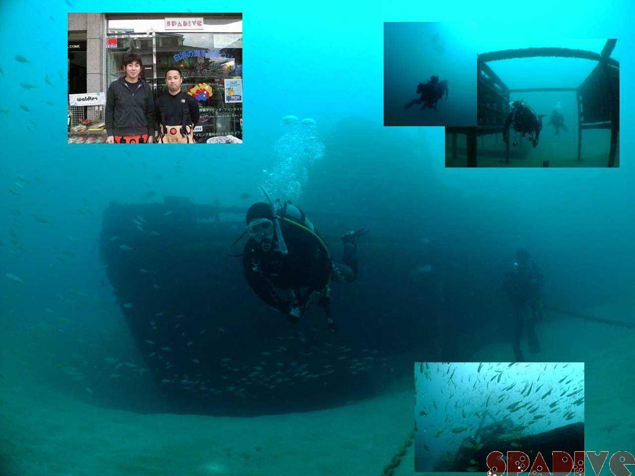 2009年初潜り|沈船&南の根ボートファンダイビング|1/2/2008白浜