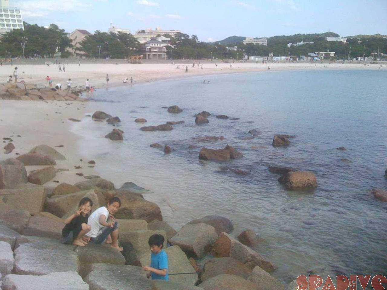 しらら浜海情報|田辺内浦湾の迷いクジラ続報|5/31/2009