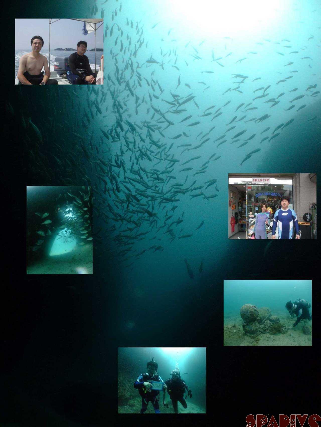 体験ダイビング&色津ボートファンダイブ|7/4/2009南紀白浜