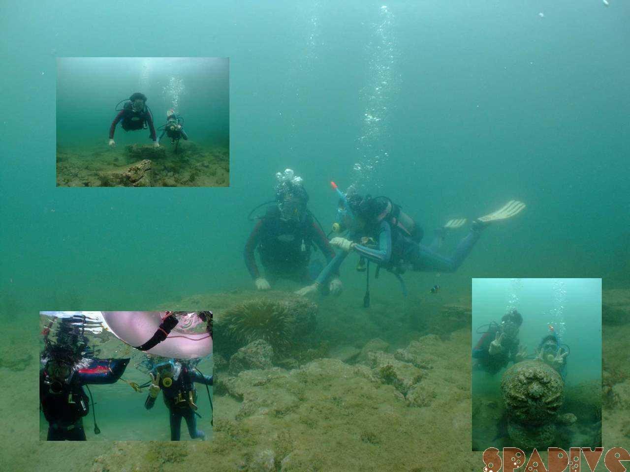 体験ダイビング|7/12/2009南紀白浜 権現崎