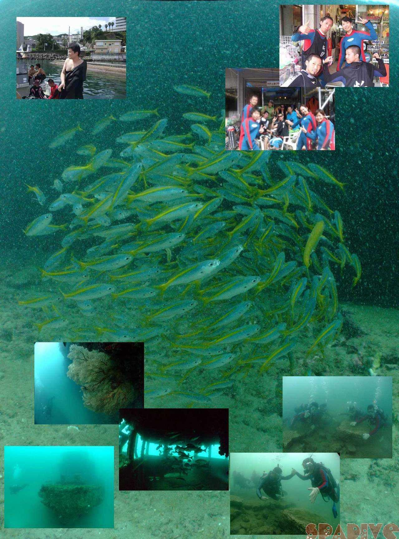 色津&沈船ボートファンダイブ 体験ダイビング 7/25/2009白浜