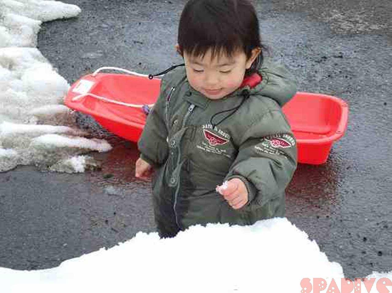 ファイル blog20100403-2.jpg