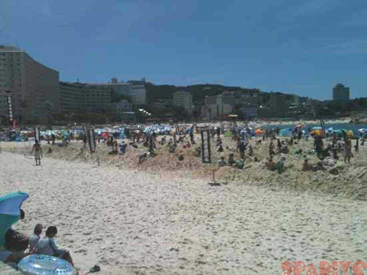 ファイル blog20110826-2.jpg