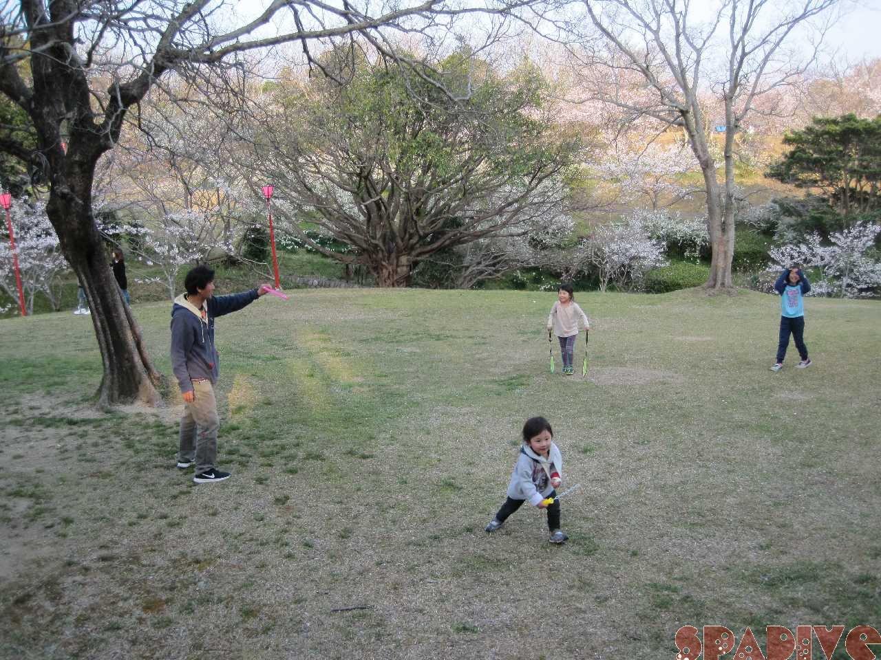 お花見 子ども達と平草原公園の桜を観に!3/25/2018
